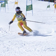 An image of Skier276