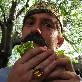 An image of SandwichBaron